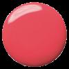 00183.15 (Pink Flower)